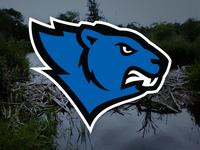 beavers_teaser