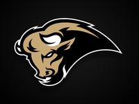 bison2_teaser