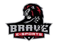 brave_drb_sk_teaser