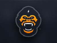 shot-35-gorilla_teaser