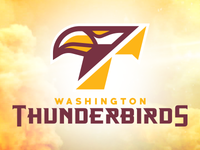 t-birds_dribbble_teaser