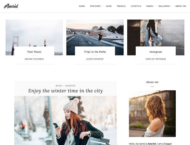 Anariel Lite wordpress theme