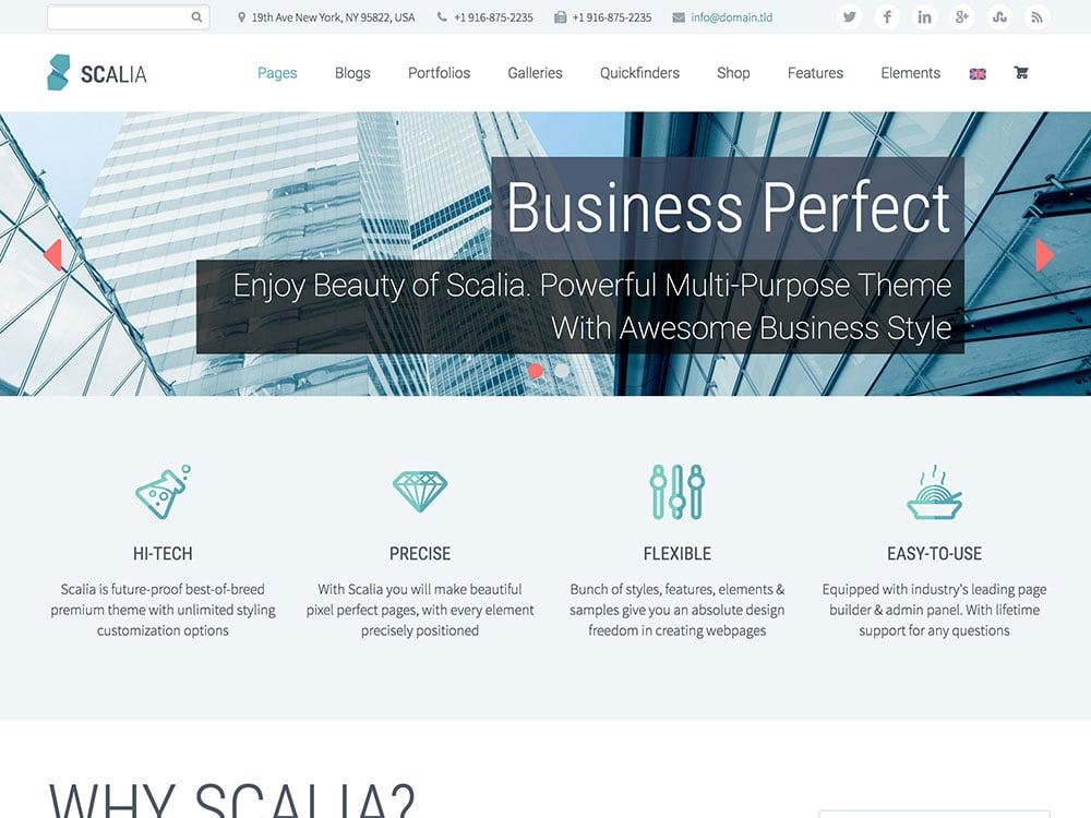 scalia-business-theme